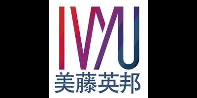 IvyU Limited